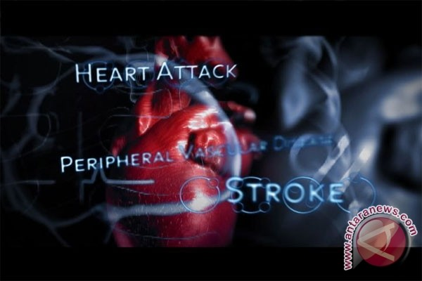Diet pangan nabati efektif cegah gagal jantung