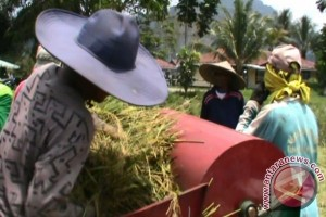 Hasil Pertanian Mempawah 2015 Ditarget Surplus 20 Ribu Ton