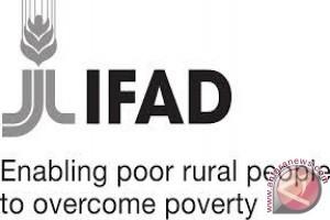 IFAD Bentuk 94 Kelompok Masyarakat Penerima BLM