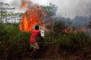 BMKG : Jumlah Titik Api Kalbar Terus Bertambah
