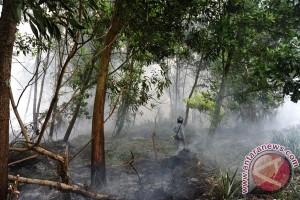 Polresta Pontianak Tetapkan Satu Tersangka Pembakar Lahan