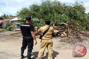 Puluhan Rumah di Ketapang Rusak Dihantam Angin Kencang