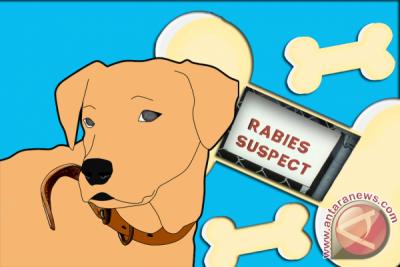 Kemenkes Ingatkan Pemda Tetap Lakukan Pencegahan Rabies