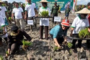 Gubernur Kalbar Optimistis Capai Swasembada Pangan Pada 2017