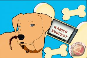 Bupati Diminta Lakukan Tindakan Cepat Atasi Rabies