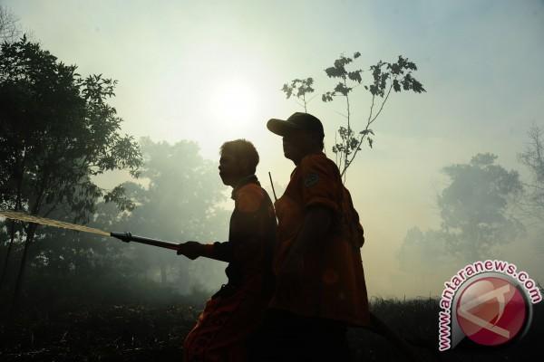 Kapolda perintahkan tangkap langsung pelaku pembakar lahan