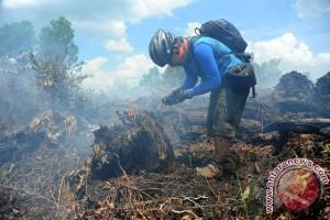 Lima Hektare Lahan Gambut di Kubu Raya Terbakar