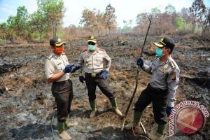 Menhut : Indonesia Siaga Darurat kebakaran Hutan