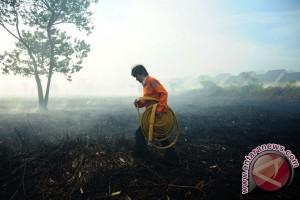 Lahan gambut di Pontianak mulai terbakar
