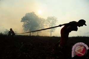 Wagub Kalbar Minta Petugas Siaga Kebakaran Lahan