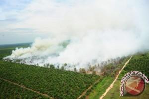 Kapolda Ingatkan Ancaman Karhutla di Kayong Utara