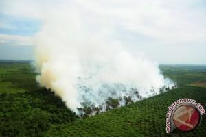 BNPB Ingatkan Puncak Kemarau Pada September
