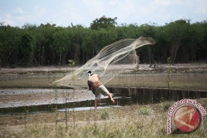 Legislator : Potensi Ikan Kapuas Hulu Menjanjikan