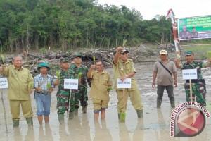 Sintang Target 2.000 Ha Cetak Sawah Baru 2017