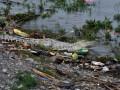 Sungai Tercemar di Indonesia
