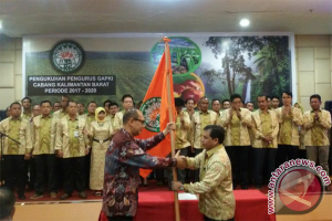 """GAPKI: Sawit """"Mesin"""" Penyumbang Devisa Tertinggi Indonesia"""