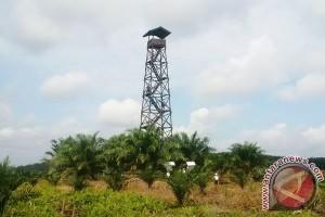Perkebunan Sawit Diajak Kelola Perkebunan Yang Ramah Lingkungan
