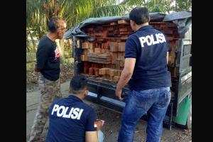 Polisi Tahan 248 Batang Kayu Olahan Ilegal