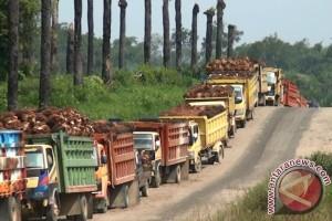 Industri Sawit Kalbar Dalam Koridor Ekonomi Nasional