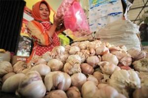 Harga Bawang Putih Di Putussibau Rp100.000/kg
