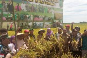 Bupati Sambas Ajak Generasi Muda Bertani