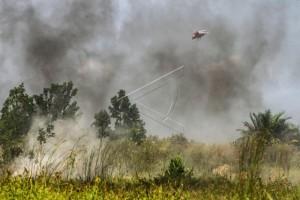 Siaga darurat bencana asap di Kabupaten Mempawah