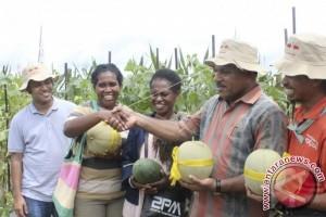 Pemkab Kubu Raya Tingkatkan Kapasitas Penyuluh Pertanian