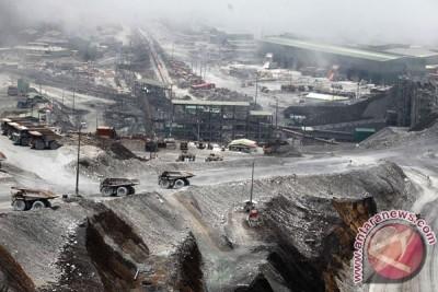 Freeport: Perusahaan Segera Operasi Normal