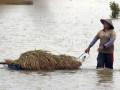 Panen Akibat Banjir