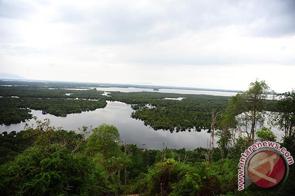 Taman nasional danau sentarum rawan kebakaran