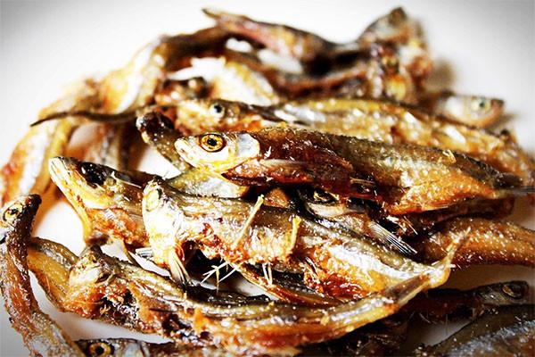 Konsumsi Ikan yang Benar Semakin Diperhatikan Warga