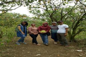 Mengolaborasikan agribisnis wisata