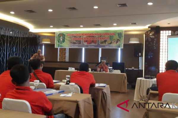 West Kalimantan encourage alternative food crops areas
