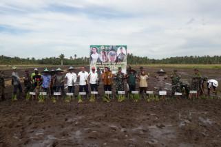 Mempawah doing dry land rice farming movement