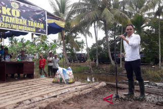 West Kalimantan accelerate the additional dry land farming program