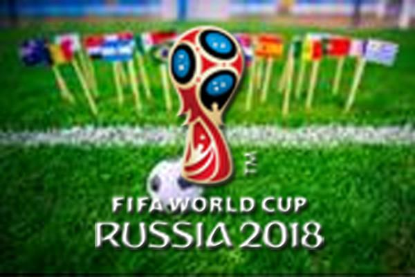 Penyusup lapangan saat Piala Dunia dipenjara 15 hari