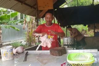 Permintaan ayam potong di Sukadana tetap tinggi pascalebaran