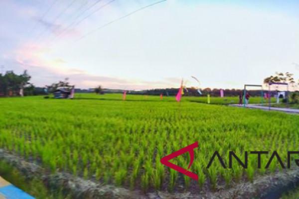Inisiator destinasi pertanian pelangi lolos sebagai pemuda pelopor pariwisata