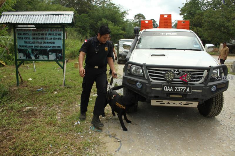 Patroli Bea Cukai di Jagoi Babang