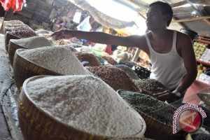 Petani Kotabaru Nikmati Harga Beras Rp10.000/kg