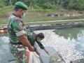 TNI Bantu Pembukaan Lahan Pertanian