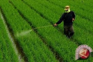 Kawasan Pertanian Berkelanjutan