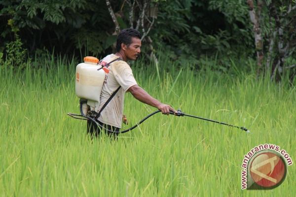 Nilai tukar petani di provinsi itu pada desember 2013 naik 0,75 persen