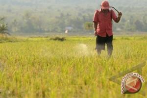 Batola Perlu Pemimpin  Peduli Pertanian