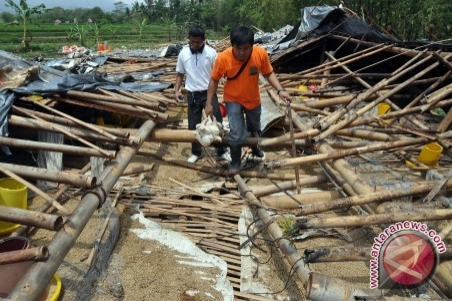 Ten Houses hit by Tornado in Banjar