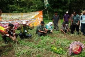 Petani Jaro Dapat Bantuan Benih Bawang Putih
