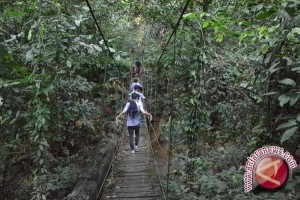 77 Kelompok Tani Diberi Izin Garap Hutan