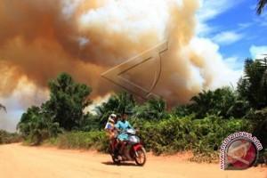 Darurat Bencana Kebakaran Di Kotabaru Diperpanjang