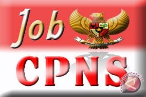 Banjarbaru Kehilangan 16 Kuota CPNS