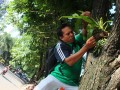 "Mewujudkan ""Bumi Hijau"" Di Kalimantan Selatan"